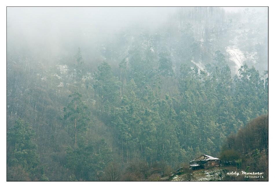 Monte asturiano